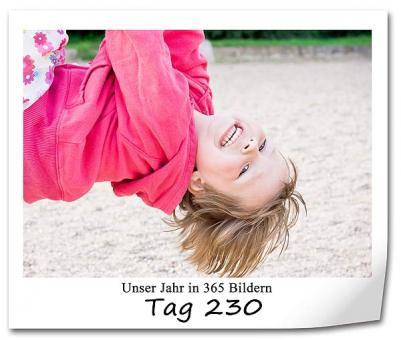 tag-230