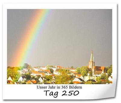 tag-250