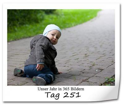 tag-251