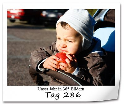 tag-286