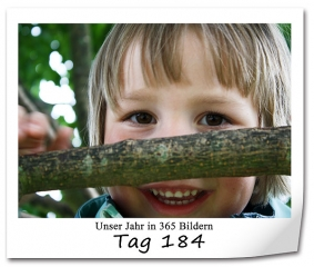 tag-184