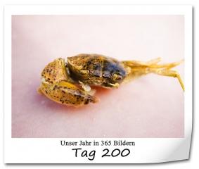tag-200