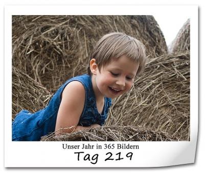 tag-219