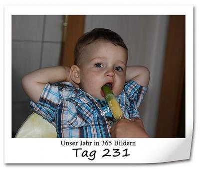 tag-231