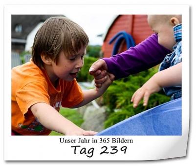 tag-239