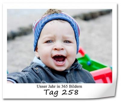 tag-258