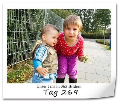 tag-269