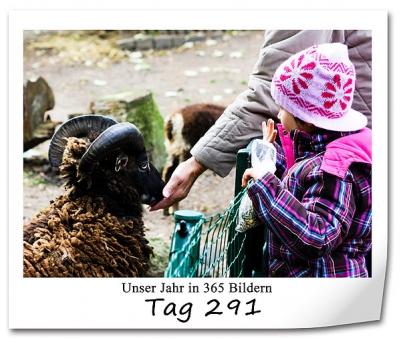 tag-291