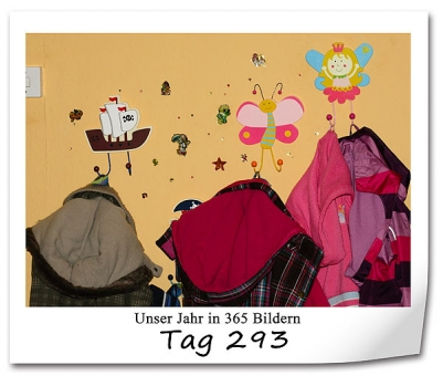 tag-293