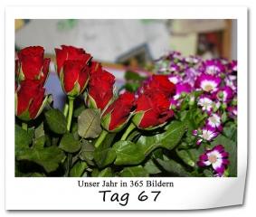 tag-67