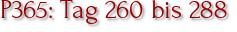 P365: Tag 260 bis 288