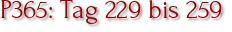 P365: Tag 229 bis 259