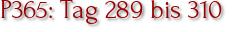 P365: Tag 289 bis 310